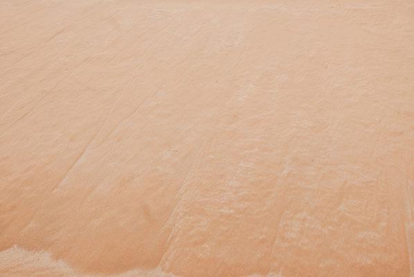 Car il y a une lézard qui court sur la dune...