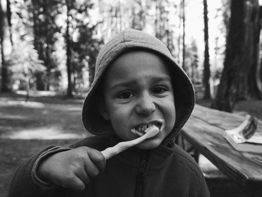une bonne hygiène bucco-dentaire même en forêt !