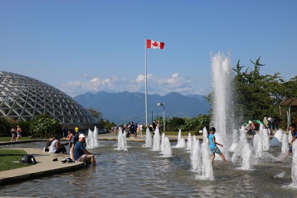 Bloedel Floral Conservatory, Queen Elizabeth Park, Vancouver