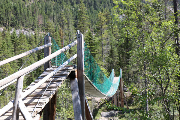 Whitehorn, Berg Lake Trail, Parc Provincial du Mont Robson