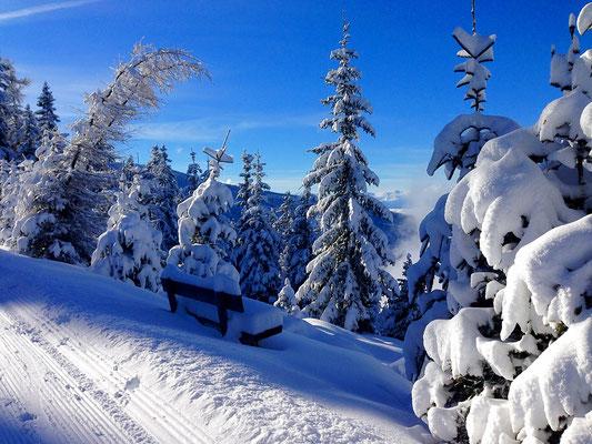 Wunderschöne Winterwanderwege