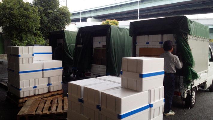 西宮市西宮浜の株式会社リフレ様での積込作業。軽貨物 運送 兵庫から東京方面へブロッコリー配送