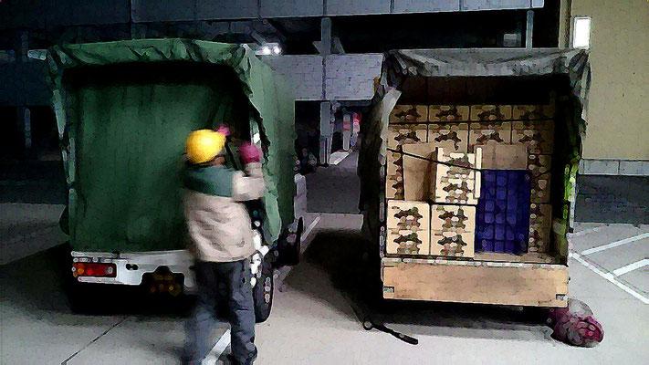 ベビーリーフのパイオニア、兵庫県神戸市「エム・ヴイ・エム商事(株)」様のベビーリーフの輸送です。」