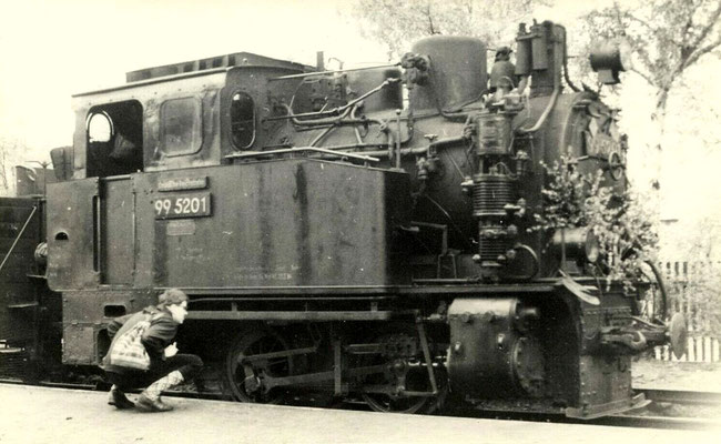 Wernigerode 1960: Lok 99 5201