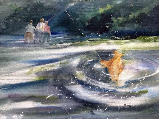 Angler an der Sieg