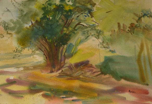 """Herbst""  -  Aquarell  40 x 60 cm"