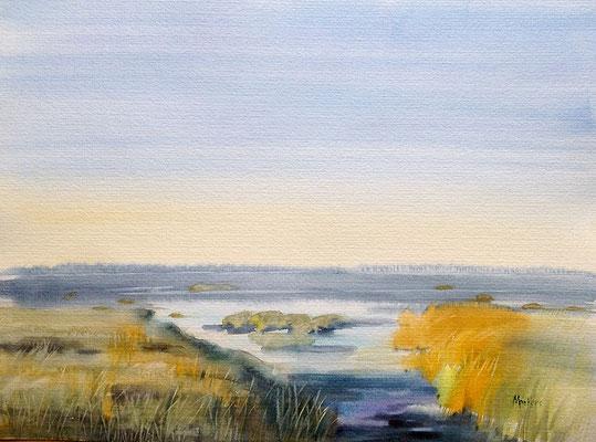 Dunen - Nordsee