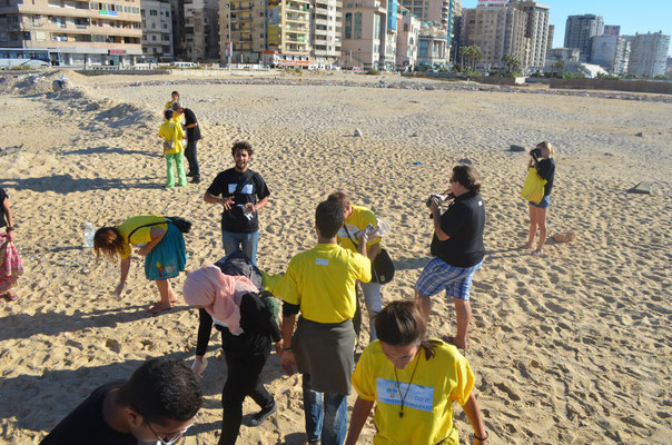Small clean up in the beach of Alexandria