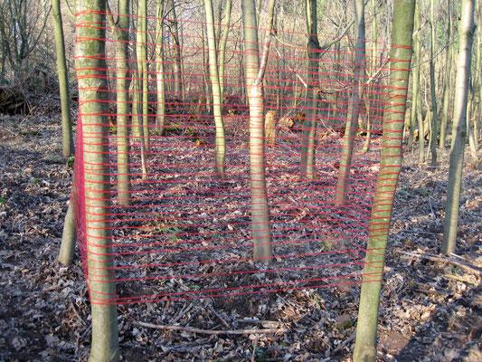das gerechte maß   2007   Bäume, Wolle, lyrischer Text