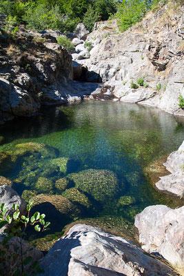 Petite baignade à Vialas