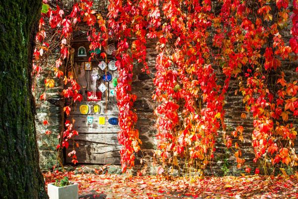 Couleurs d'automne aux Espérelles