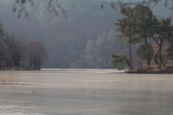 Lac des Camboux gelé