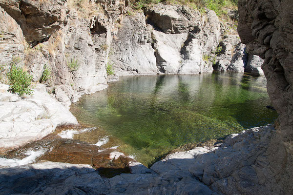 Vialas rivières