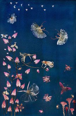 Hauchzarte Insekten schweben durch das Bild.