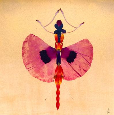 Ballerina 30 x 30 als Kunstwerk in Blüten