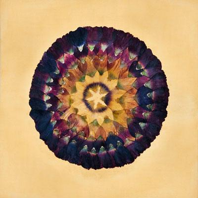 Die Aura - Blütenkunst Altus-Art