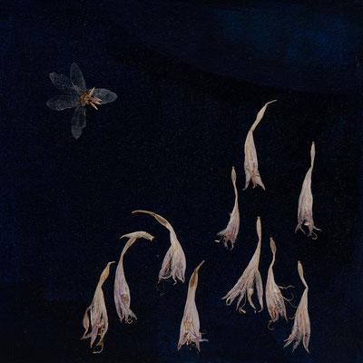 Fisch-Reiherei