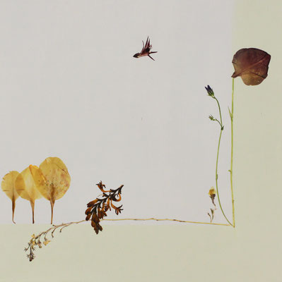 Wie ein Vogel so frei 30 x 30 Miniatur aus Blüten