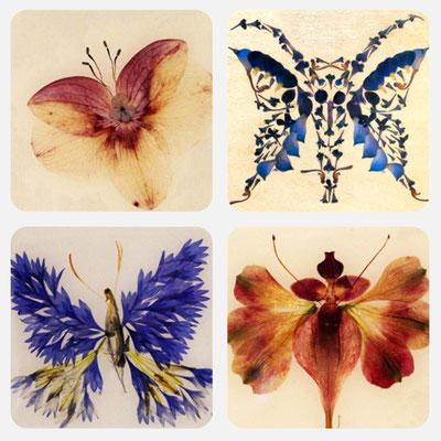 4er Set Schmetterlinge