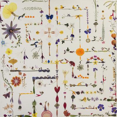 Labyrinth Flora Essencia 70 x 70