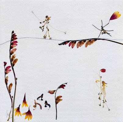 Die Seiltänzerin - Blüten, die tanzen können altus-Art