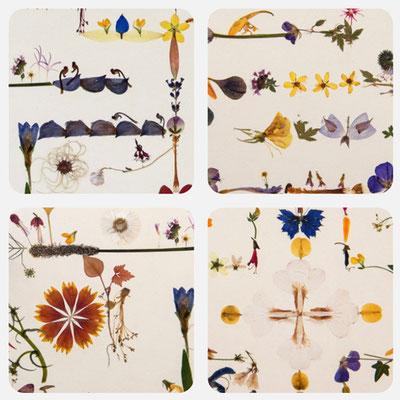 4er Set Flora-Essencia 2