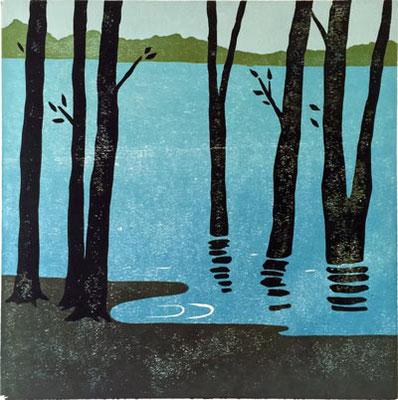 Bäume am See, 2015, Auflage 12 römisch