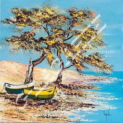 167 Barque sur la plage  40x40