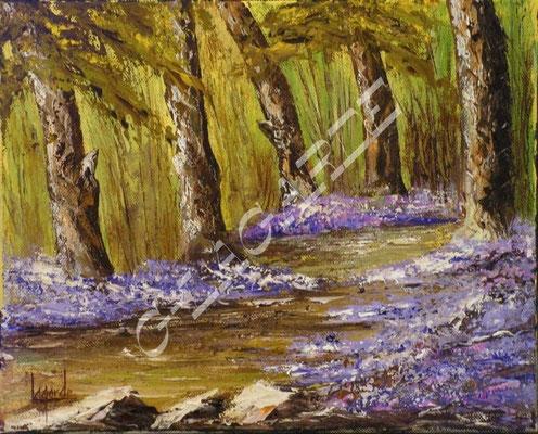 251  Violette des bois  40x30