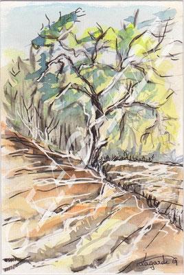 3 L'arbre +c 30x24