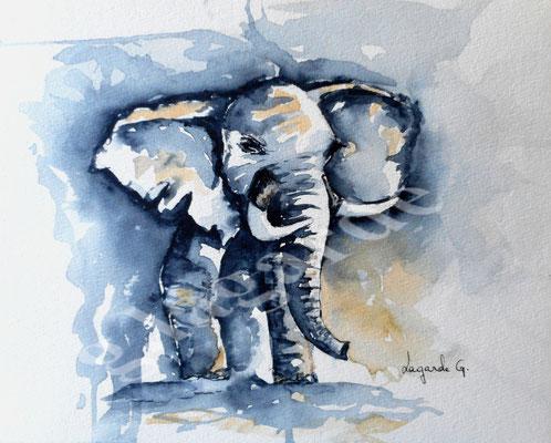 74 Eléphant  +c 40x30