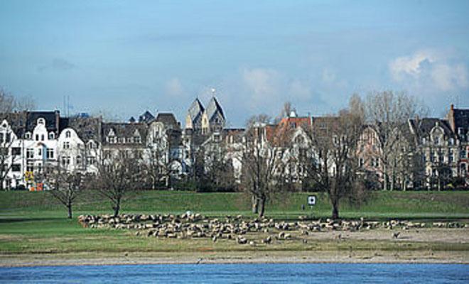 An der Uferfront des Rheins wohnt Silvia, mit der Hendrik einen Abend und eine Nacht verbringt. Auch Carla, die Schwester Michaels wohnt in einem der Häuser (Bild: www.düsseldorf.de Stadbezirk 4 - in Bildern)