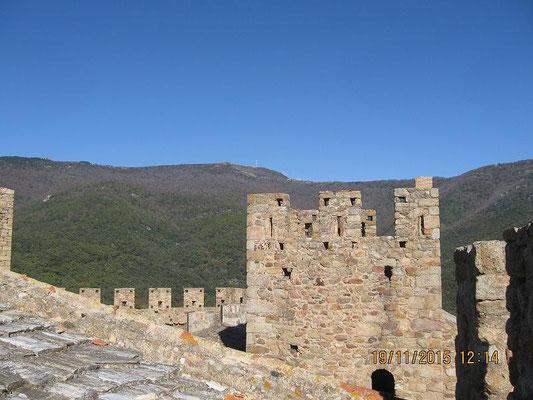 Blick nach Norden - zum Puig Neulos
