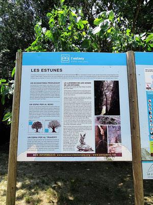 Wenig entfernt von Banyoles und dem See liegt Les Estunes, ein märchenhafter Park, der von Travertinfelsen und Eichen gebildet wird