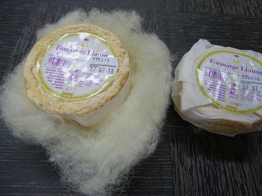 Eine der Käsesorten (eingehüllt in Schafwolle)