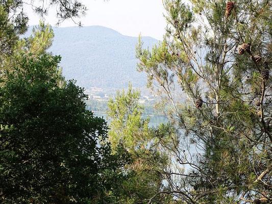 Vor Banyoles hat man vom Aussichtspunkt Santa Martirià (Schutzpatronin von Banyoles) einen Blick auf den See - allerdings im Laufe der Zeit ziemlich zugewachsen! Der See von Banyoles wird durch unterirdische Quellen aus den Garrotxa gespeist