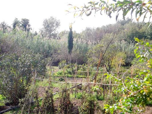 Die Gärten von Perelada