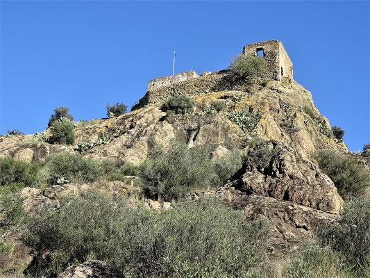 Gesamtansicht der Burg in Ostrichtung. Auf der Spitze erheben sich die Reste des Bergfrieds