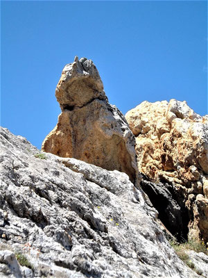 Reine Geologie: Marmor, Schiefer Pegmatit. Die Natur schafft Formen - Vorbilder für Lebensformen und künstlerische Gestaltungen?