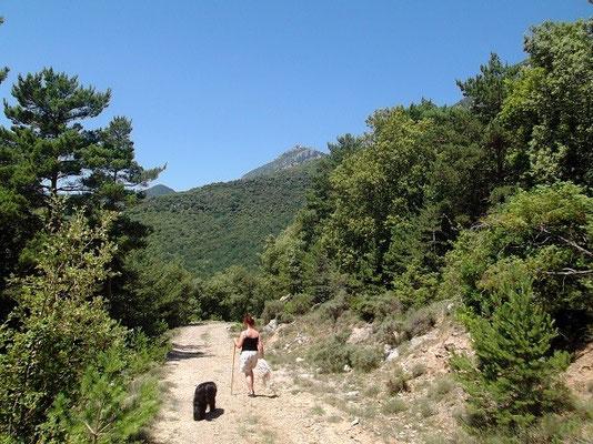 Weg zur Kapelle Sant Martí de Corsavell
