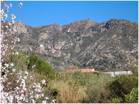 Von der Straße aus erblickt Hendrik den Bergzug, auf dem die Burg San Salvador de Verdera liegt. Links darunter die weiße Kapelle Sant Onofre