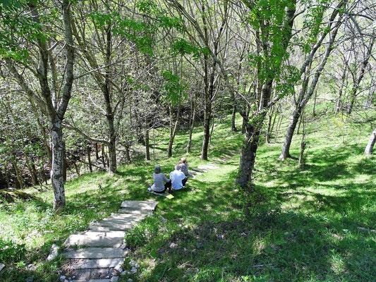 Auch hier wird gepicknickt - mit schönem Blick in den Wald und auf Brunnen