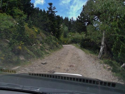 Letzter Teil der Piste - gleich sind wir am Parkplatz unterhalb der Hütte