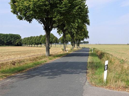 Weg nach Beinum - hier - unter anderen Straßenverhältnissen - zog der Tross Karls
