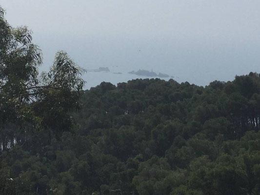 Nochmals der Blick auf die Ameiseninseln
