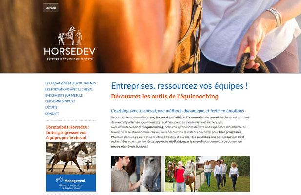 Création du site web Horsedev