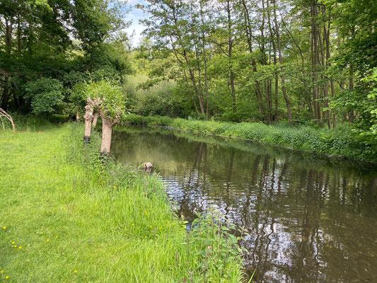 Fluss direkt neben dem Garten