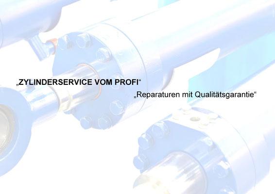 Hydraulik Zylinder Reparaturen, Dichtungen, SKF, Freudenberg