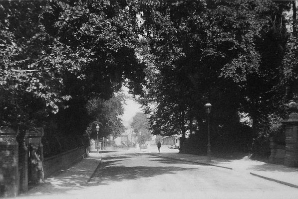 Gardens at Yardley Road looking south, c. 1906