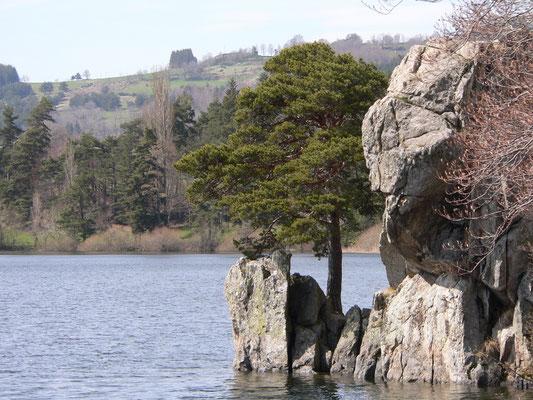 L'eau dans tous ses états sur le plateau ardéchois - Cros de Géorand - (Laurent)
